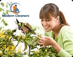 Gardening Services Balham