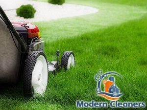 grass-cutting-services-balham
