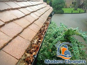 gutter-cleaning-balham